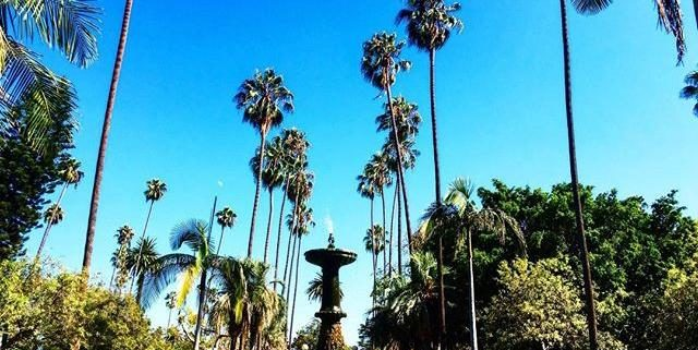 area in beverly hills