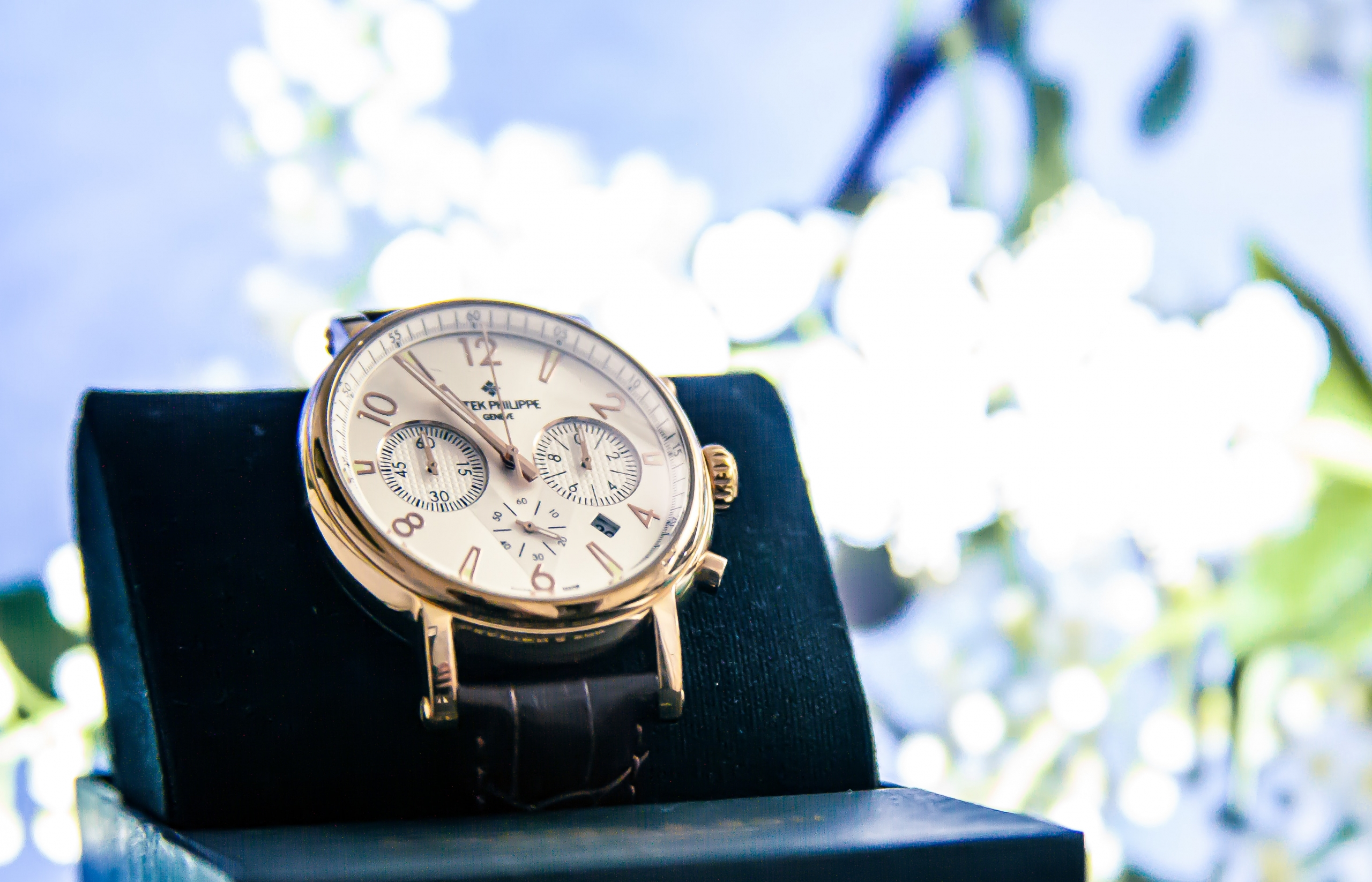 Top 10 Most Expensive Patek Phillipe Watches Ever Sold on Auction as of 2021, and Their Prices